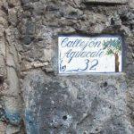 1-el-callejon-del-aguacate