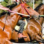 carrera-de-caballos