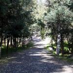 bosque-de-tlalpan