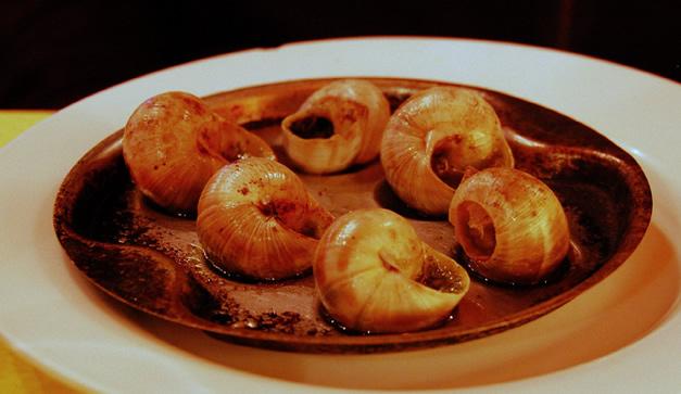 5 razones para comer caracoles chilango for Caracol de jardin alimentacion