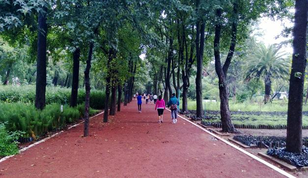 M s espacio verde en esta selva de asfalto vayan chilango for Viveros coyoacan