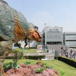 visiten-un-jardin-prehistorico