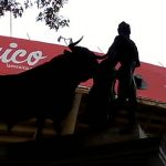 en-mexico-la-tauromaquia-es-patrimonio-cultural