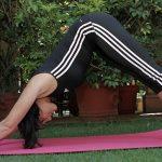 preparense-para-el-11-encuentro-nacional-de-yoga