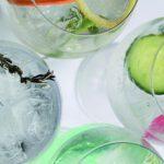 todo-lo-que-tienes-que-saber-del-gin-tonic