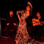 espectaculo-adelaida-de-flamenco