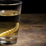 festival-dardo-2015-destilados-artesanales-de-origen