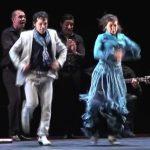 pases-para-la-gala-miradas-flamenco