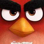 trailer-de-angry-birds-la-pelicula