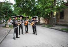 Mariachis y tríos