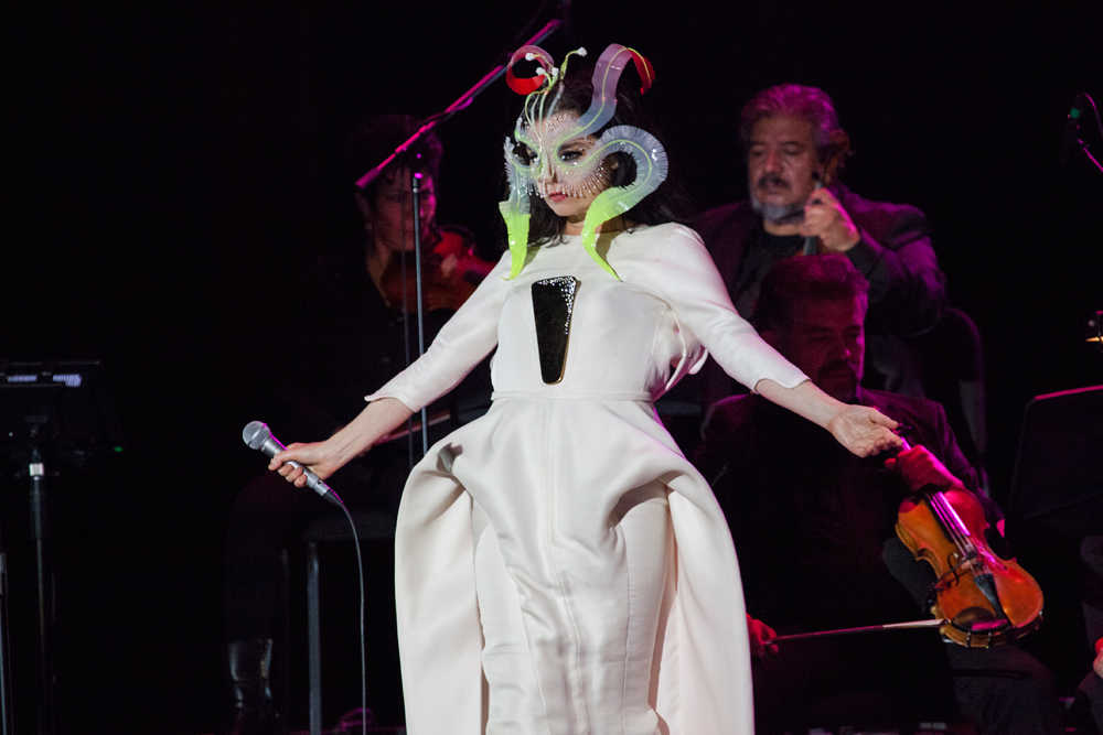 Bjork Fashion Designer
