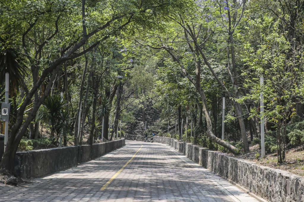 Parque Lira recorrido