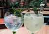 Gin tonic a tu gusto y medida