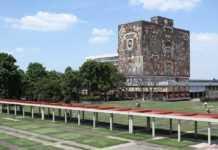 Estudiante de la UNAM se suicida en Ciudad Universitaria.
