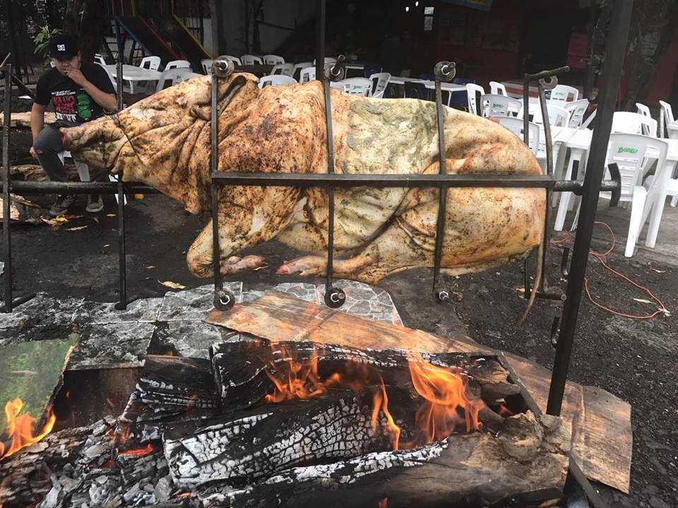 El Cerdo Mareado