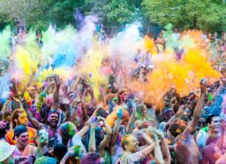 Multicolor Fest