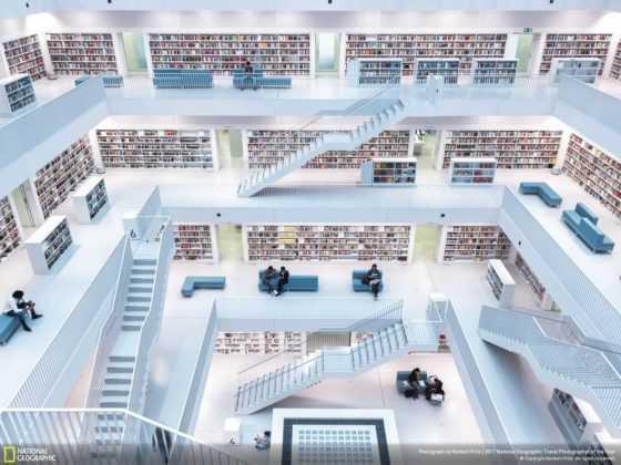Levels of Reading de Norbert Fritz