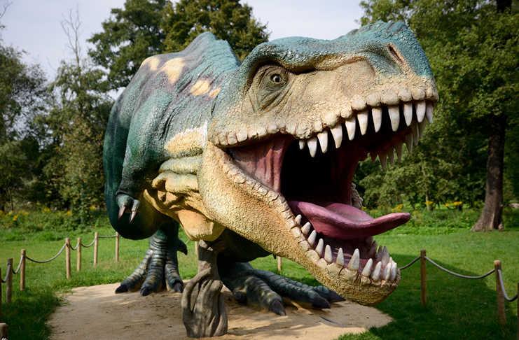 Dinosaurios En La Feria De Chapultepec, Exposición