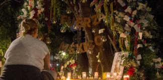 memorial 19s