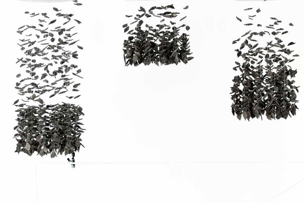 Hormiguero hojas