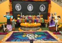 Ofrendas Día de Muertos San Ángel