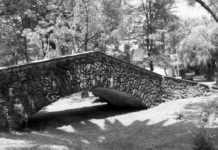 puentes de Chimalistac
