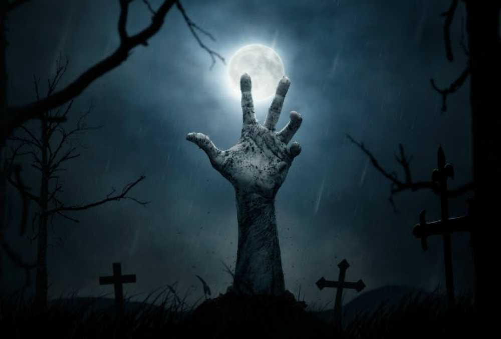 El festival terror survival llega a m xico el 28 de octubre - Efectos opticos de miedo ...