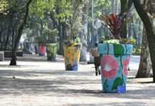 Instalan macetas gigantes sobre Reforma.
