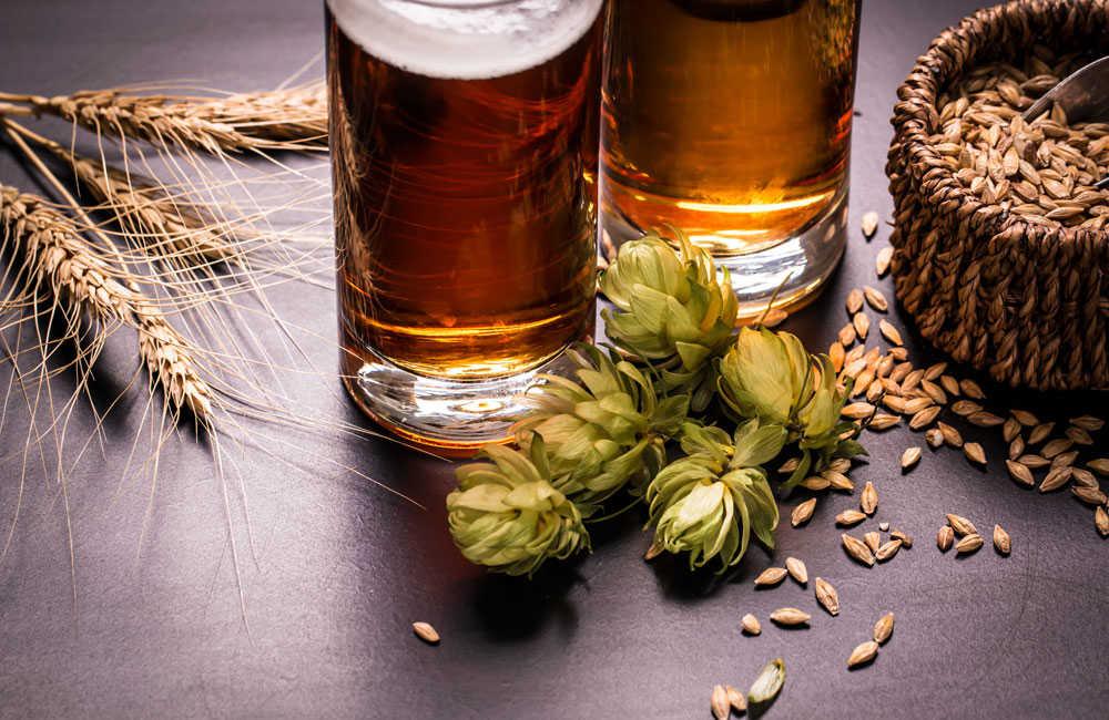 mejores cervezas Cerveza México