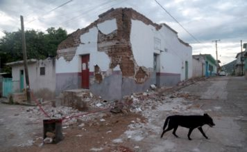 Al asistir a este tour histórico por la Ciudad de México conocerás más de la capital y apoyarás a los damnificados por los sismos de septiembre.