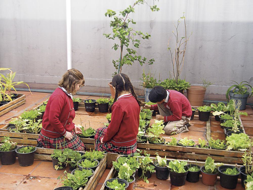 Escuela Mexicana del Valle