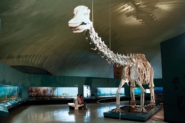 dinosaurios en la cdmx