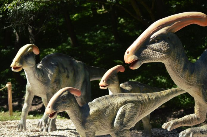 Si quieres ver dinosaurios en la CDMX, existen varias opciones que van desde museos hasta tiendas de juguetes.