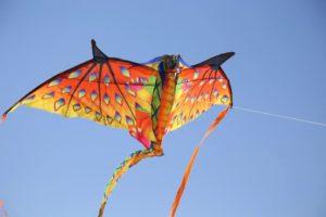 festival nacional vuelo de papalotes