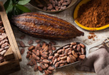 Superfoods mexicanos