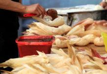Tamales exóticos en CDMX