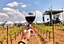 festival 100 vinos mexicanos 2018