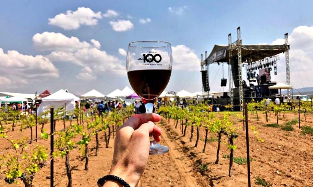Resultado de imagen para 100 vinos mexicanos