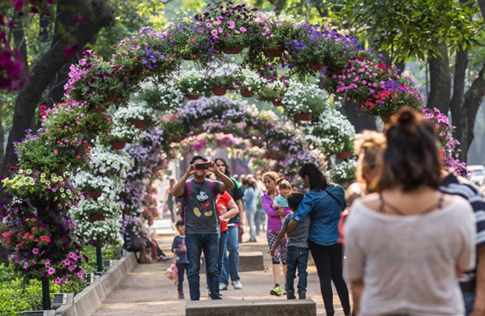 Lánzate a ver los arreglos del Festival de flores y jardines 2018