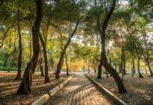 Con el proyecto de rehabilitación de Chapultepec buscan rescatar la tercera sección del bosque y remodelar sitios como el Parque Cri-Cri.