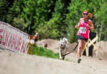carrera y caminata con mascota