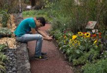 Día nacional de los jardines botánicos