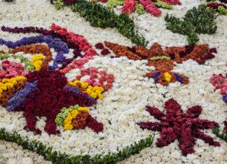 flores en Polanco