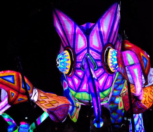 Lánzate a ver alebrijes iluminados en la CDMX en la noche de museos