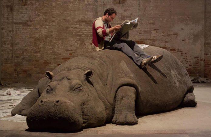 hope hippo en la cdmx