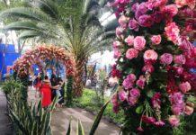 Festival de Flores interviene la Casa Azul