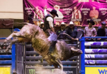 Cuernos Chuecos en la Arena Ciudad de México