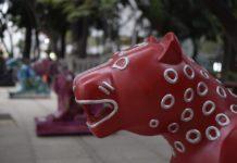 expo de Xolotol y Jaguar