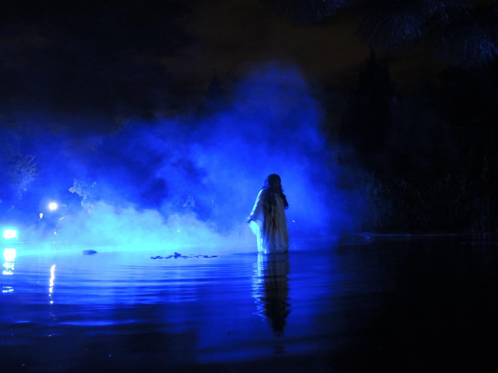 festival de noche de muertos