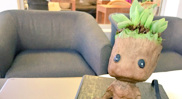 Macetas de Baby Groot y el nuevo furor chilango en las calles on